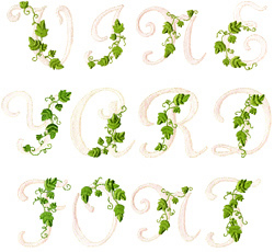 Great Notions Home Format Fonts Embroidery Fonts Vine Alphabet 1 80 Inches H