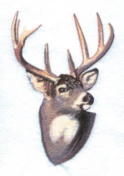 Design – Textile – Embroidery – Jacobean pattern, deer