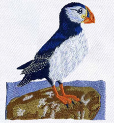 Atlantic Puffin embroidery design