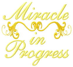 Miracle in progress grand canyon