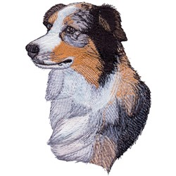 Australian Shepherd embroidery design