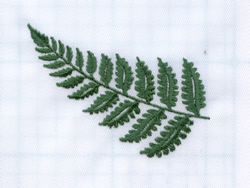 Fern Branch embroidery design