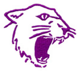 Wildcat embroidery design