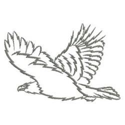 Eagle soaring outline