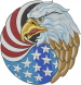 American Flag Eagle embroidery design
