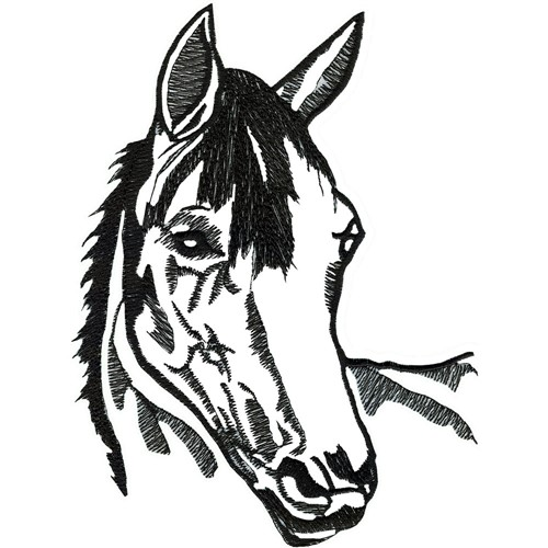 Horse Embroidery Designs For Pinterest