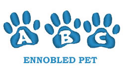 Ennobled Pet embroidery font
