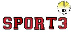 Sport 3 1.98in embroidery font