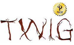 Twig embroidery font