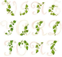 VINE ALPHABET embroidery font