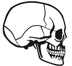 Skull Profile print art