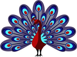 Peacock print art