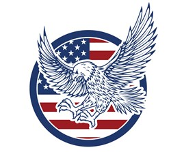 USA Eagle print art