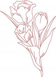 Tulip Bouquet print art