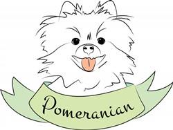 Pomeranian print art