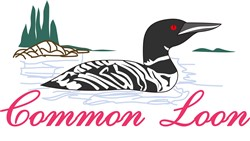 Common Loon print art