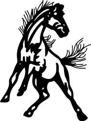 Mustangs print art