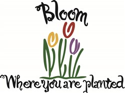 Bloom Where You Are Planted print art