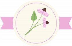 Echinacea Flower print art