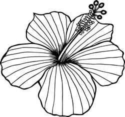 Hibiscus Outline print art