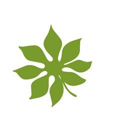 Tropical Plant print art