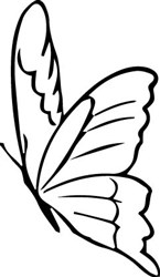 Butterfly Outline print art