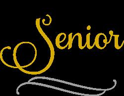 Fancy Senior 2021 print art