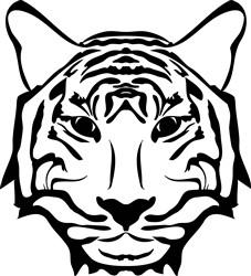 Tiger Face print art