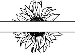 Sunflower Split print art