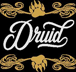 Druid print art