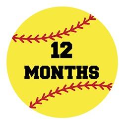 12 Months Softball print art