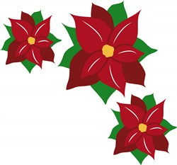 Poinsettias print art