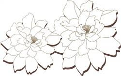 Floral Blooms print art