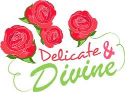 Rose_Delicate_&_Divine print art