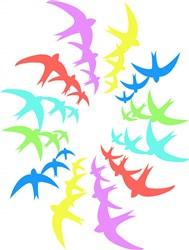 Bird Rainbow print art