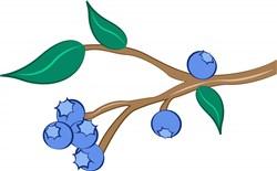 Blueberries print art