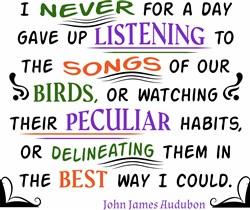 Bird Songs print art