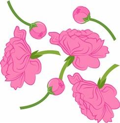 Peony Flowers print art