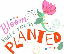 Bloom Where Planted print art