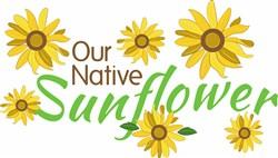 Native Sunflower print art