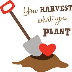 Harvest What You Plant print art