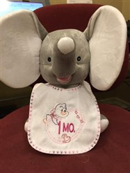 How to Embellish a Premade Baby Bib to Make a Baby Monthly Milestone Bib