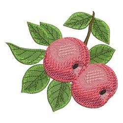 Delicious Apple embroidery design