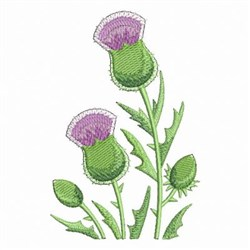 Thistle Floral embroidery design