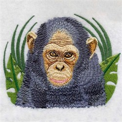 Baby Chimp embroidery design