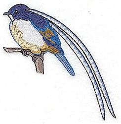 Long Feather Bird embroidery design