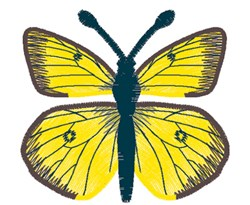 Clouded Sulphur Butterfly embroidery design
