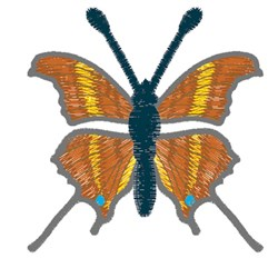 Ruddy Daggerwing Butterfly embroidery design