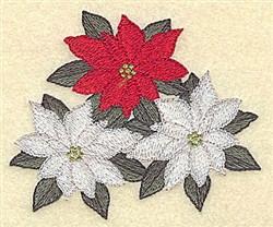 Colored Poinsettias embroidery design