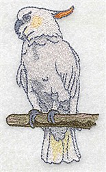 Cockatoo embroidery design
